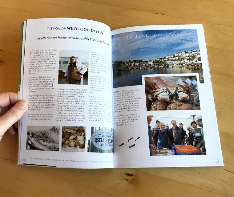 Blueriver Cottages brochure design