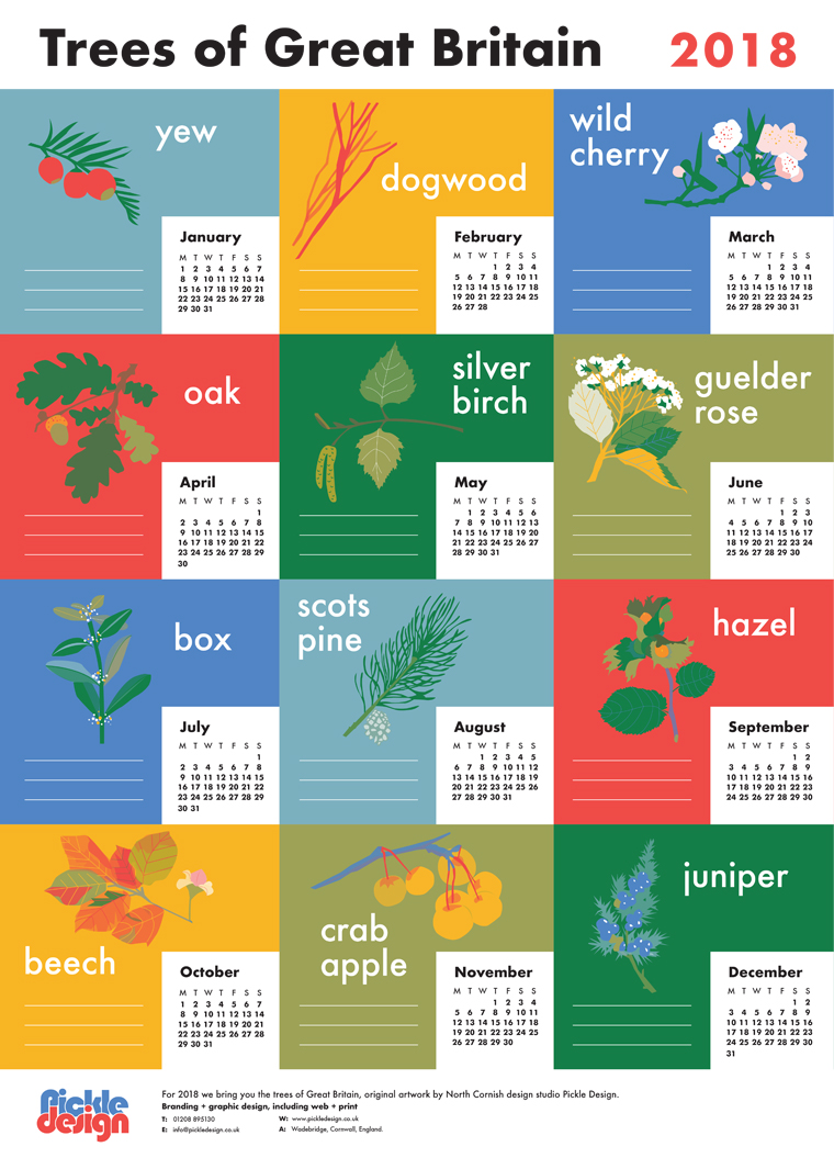 A2 poster calendar designed and illustrated by Pickle Design featuring British trees