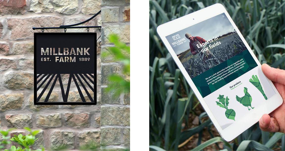 Website and signage design