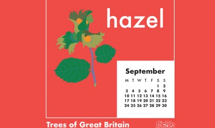 Download our September calendar with our retro style illustration of the Hazel from our pick of Great British Trees