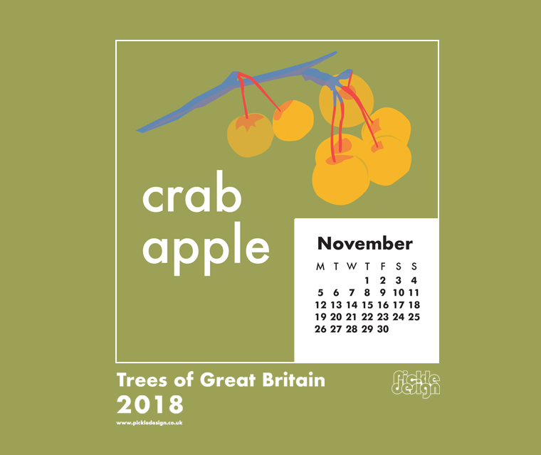 Download our November calendar with our retro style illustration of the Crab Apple tree from our pick of Great British Trees