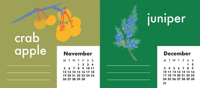 Crab apple and Juniper tree retro illustration
