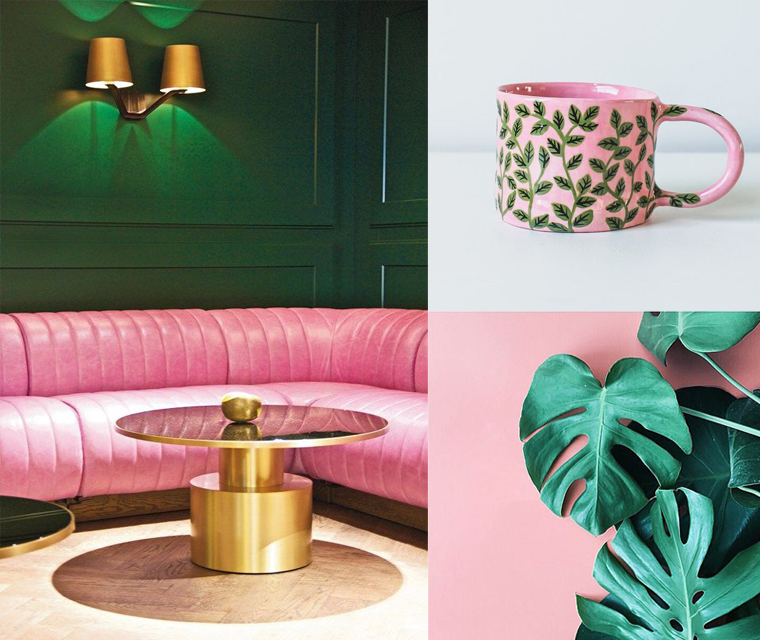 Interiors, plants and ceramics with dark green and bright pink