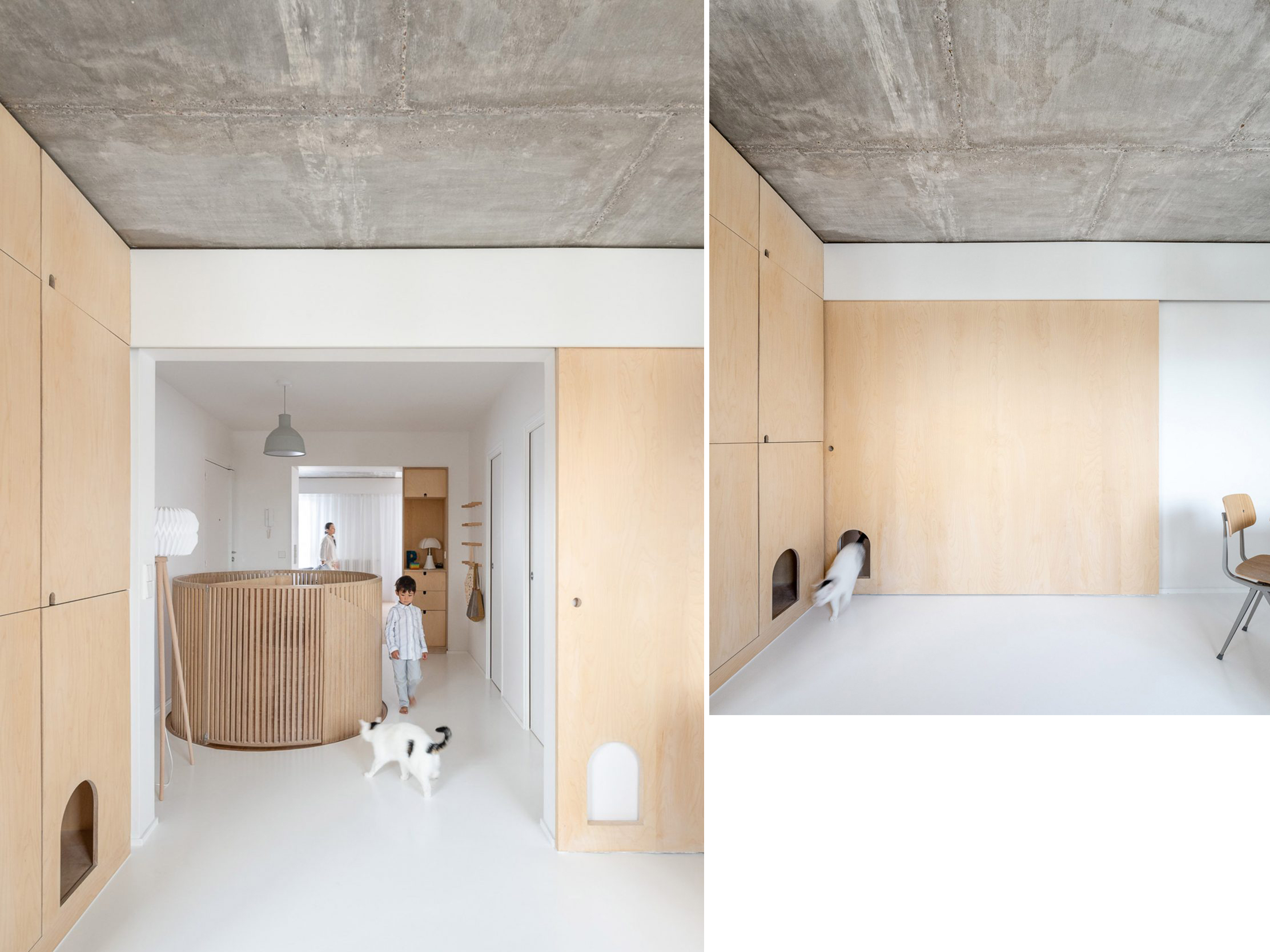Paris duplex with birch plywood