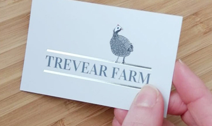 Business card design in Cornwall