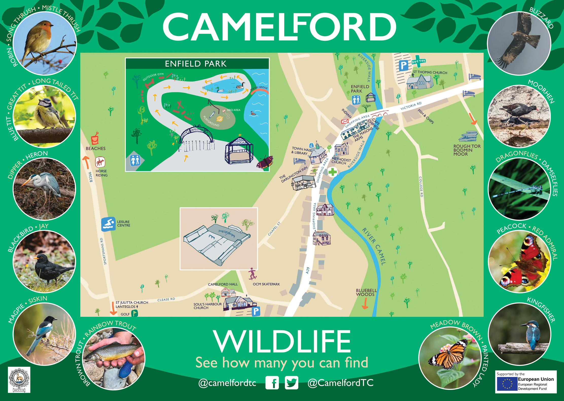 Illustrated town map with wildlife photos for Camelford