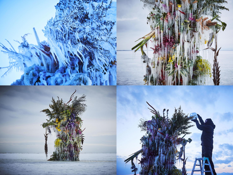 Floral-art-frozen